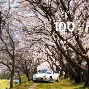 2020年の桜を求めて・・・